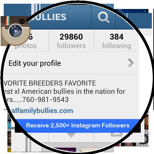 Buy 2.5k Instagram Followers